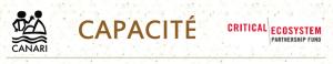 Capacite_Newsletter_Header