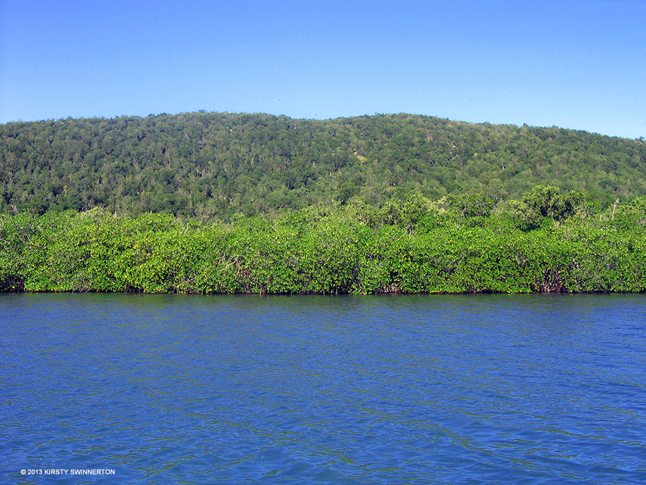 Where Is Goat Island Found In Jamaica