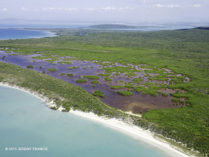 Manatee Bay, Hellshire Coast, with Goat Islands in the distance - Jeremy Francis