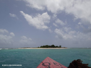 Approaching Little Half Moon Cay, an important breeding site for Brown Noddy - Lisa Sorenson